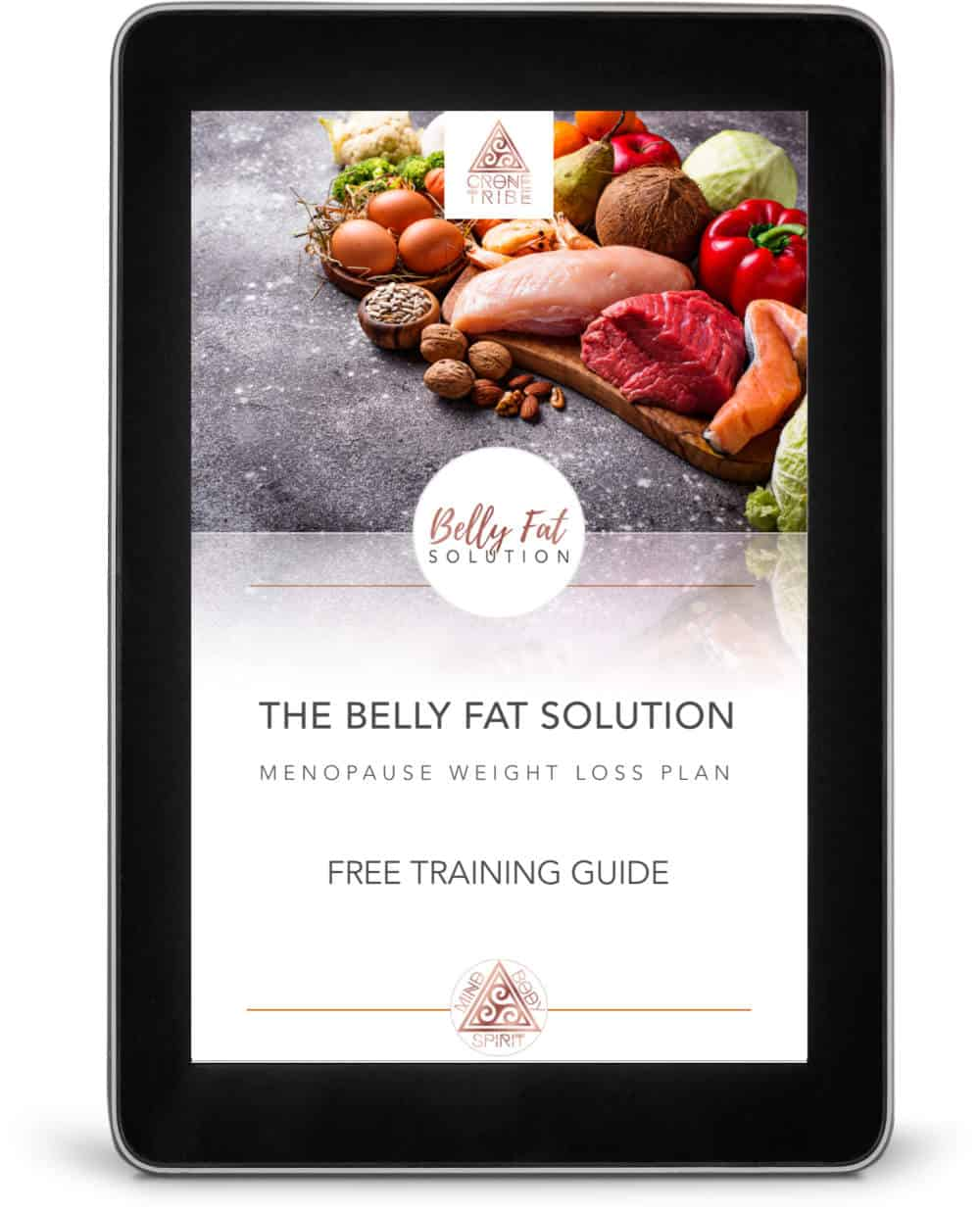 Belly Fat Solution Free Training Guide Sample